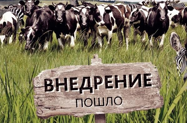Живую силу для цветной революции в России решено завозить из Украины