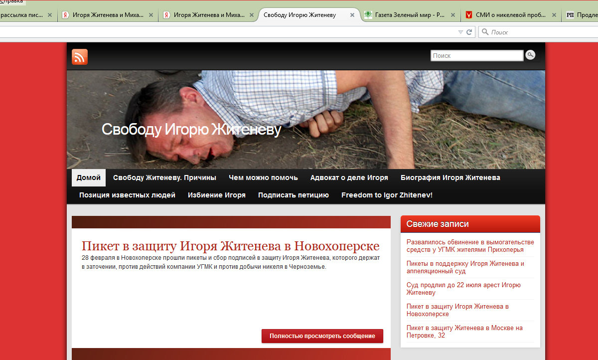 Антиникелевых активистов будут судить в Центральном райсуде Воронежа.
