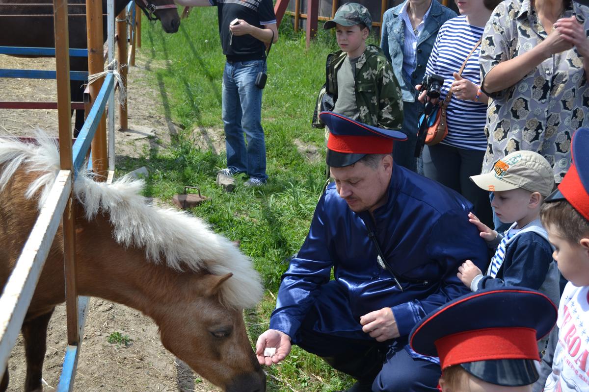 Брянское региональное отделение СКВРиЗ отпраздновало свою регистрацию в Минюсте
