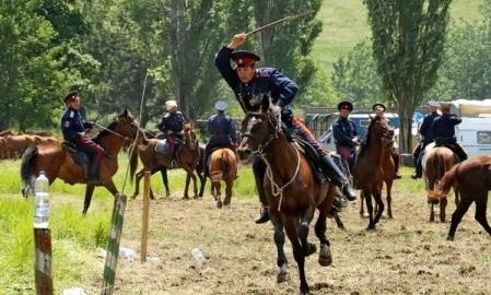 На территории Ростовской области создается конный центр