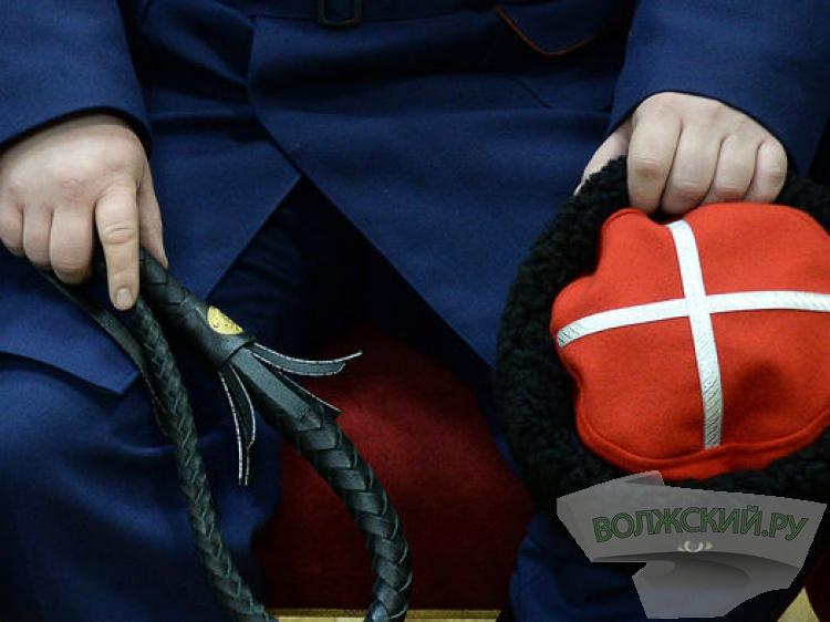 В регионе казакам «подарили» более 186 миллионов рублей